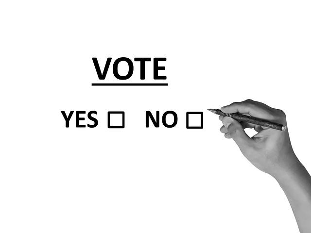 Rozhodování, zda volit