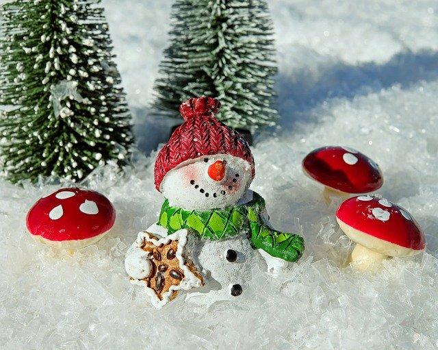 veselý sněhulák.jpg
